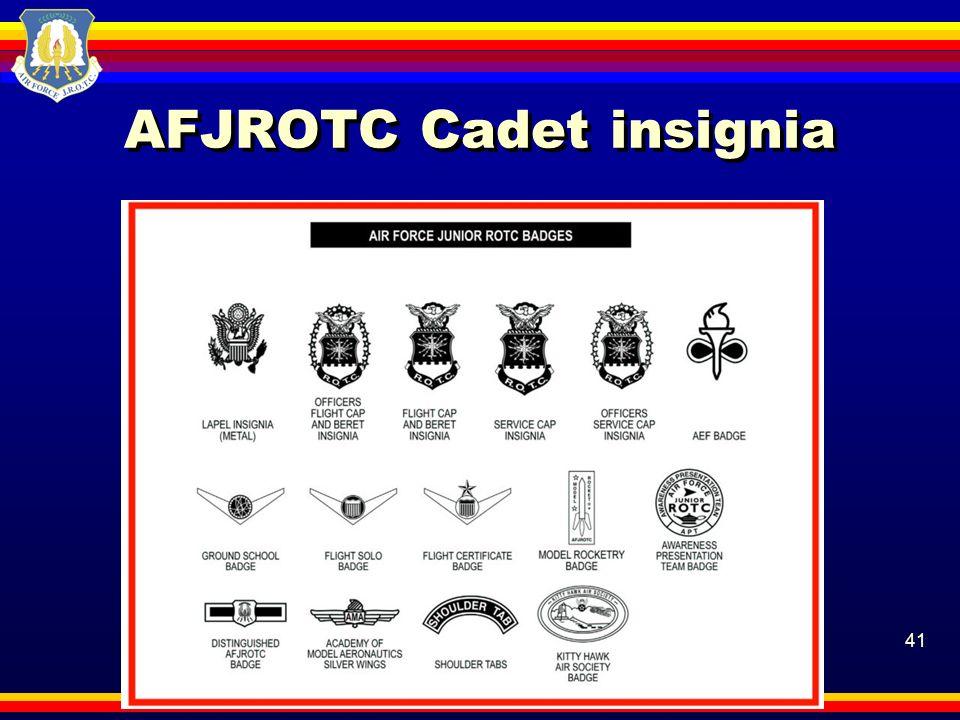 41 AFJROTC Cadet insignia