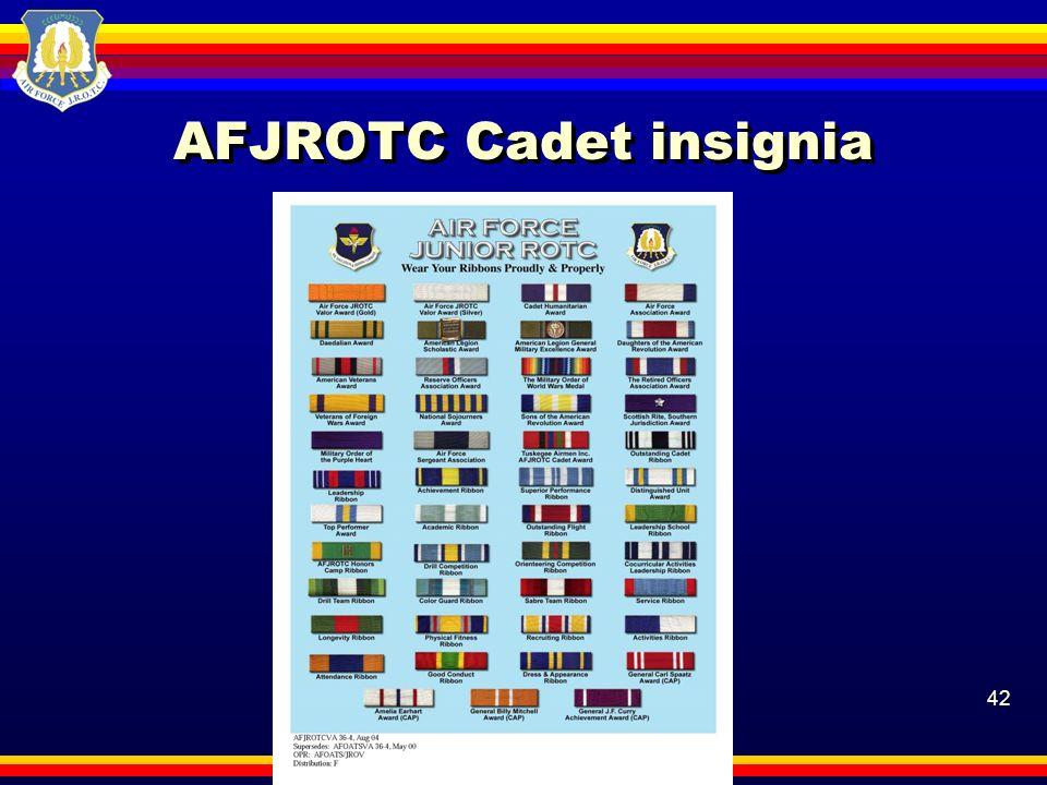 42 AFJROTC Cadet insignia