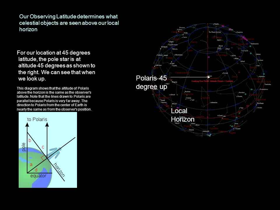 Our Observing Latitude determines what celestial objects are seen above our local horizon For our location at 45 degrees latitude, the pole star is at
