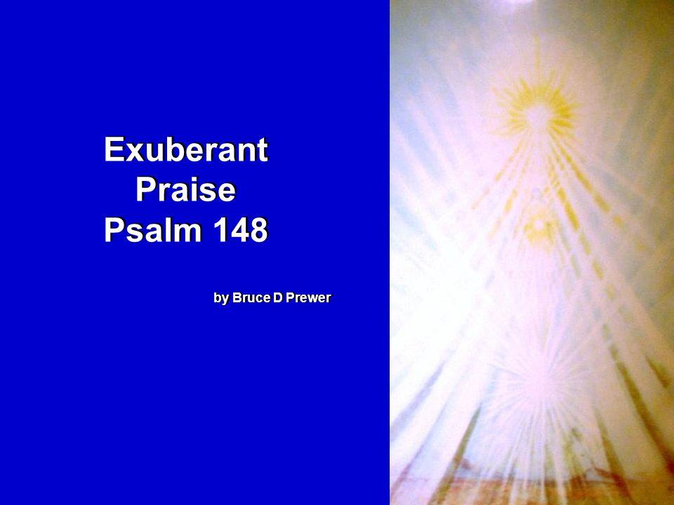 Exuberant Praise Psalm 148 by Bruce D Prewer Exuberant Praise Psalm 148 by Bruce D Prewer