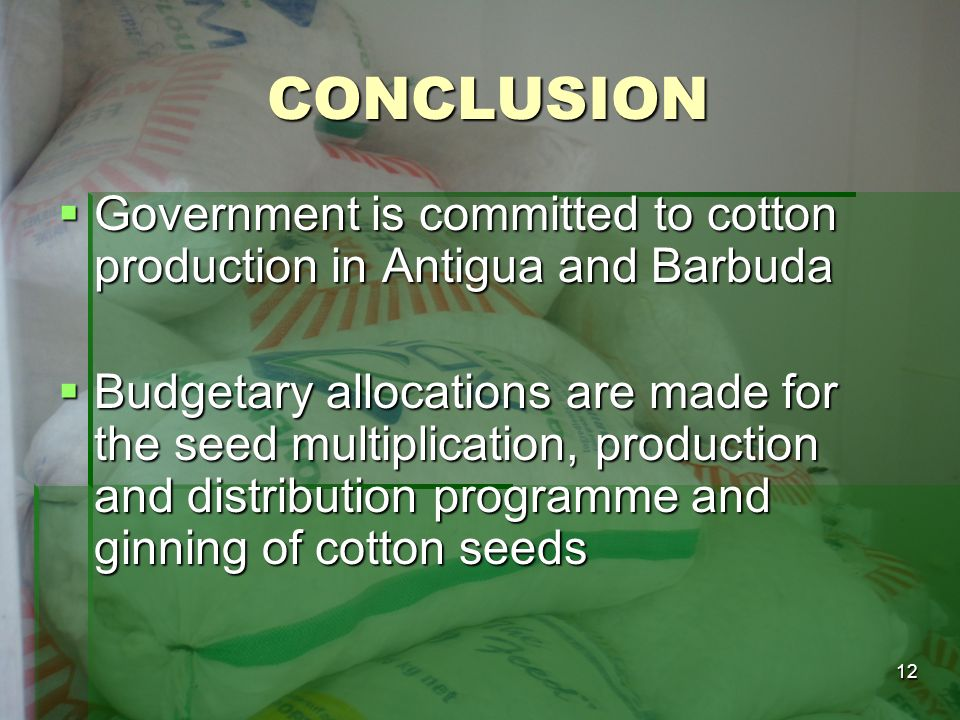 12 CONCLUSION Government is committed to cotton production in Antigua and Barbuda Government is committed to cotton production in Antigua and Barbuda