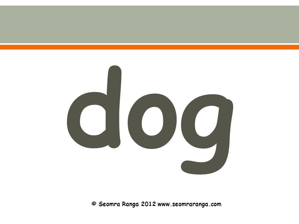dog © Seomra Ranga 2012 www.seomraranga.com