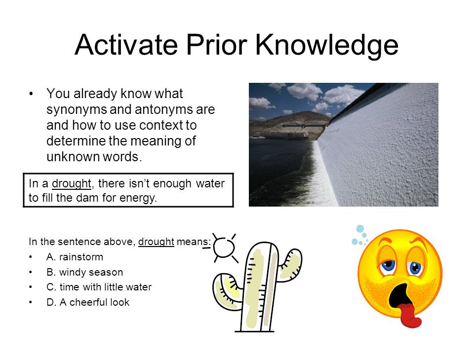 Activate Prior Knowledge II Today you will learn to apply knowledge of synonyms, and antonyms to determine the meaning of words and phrases.