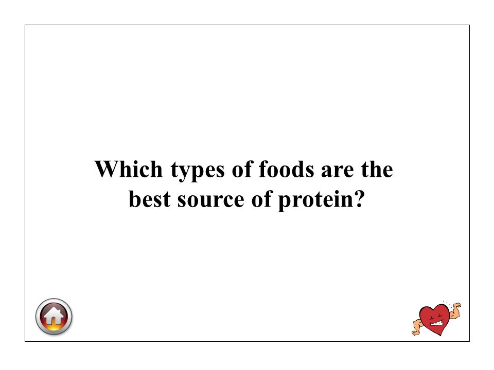 Which types of foods are the best source of protein?