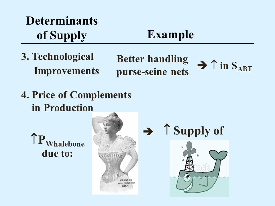 Determinants of Supply Example 3. Technological Improvements Better handling purse-seine nets 4. Price of Complements in Production P Whalebone due to