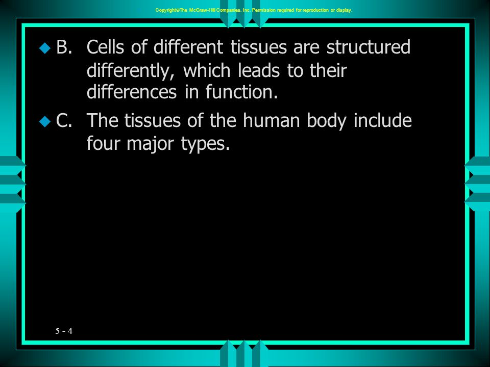 5 - 5 u Epithelial Tissues: A.General Characteristics 1.Epithelial tissue is widespread throughout the body, covers organs, and lines body surfaces.