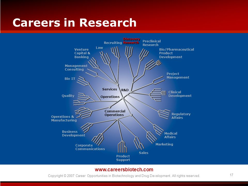 www.careersbiotech.com Copyright © 2007 Career Opportunities in Biotechnology and Drug Development. All rights reserved. 17 Careers in Research Discov