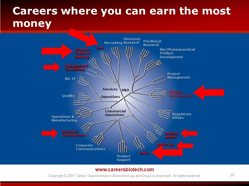 www.careersbiotech.com Copyright © 2007 Career Opportunities in Biotechnology and Drug Development. All rights reserved. 20 Careers where you can earn