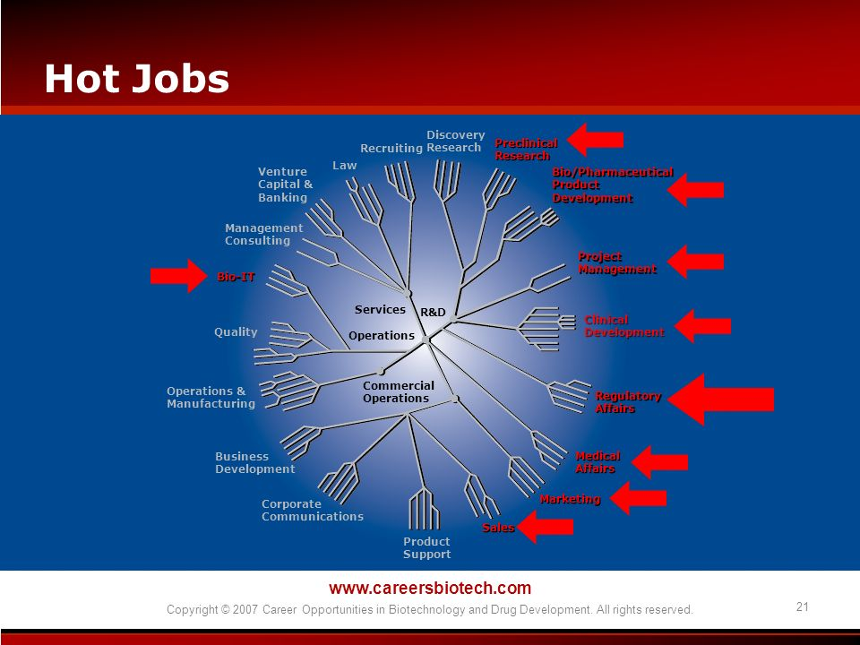 www.careersbiotech.com Copyright © 2007 Career Opportunities in Biotechnology and Drug Development. All rights reserved. 21 Hot Jobs Discovery Researc