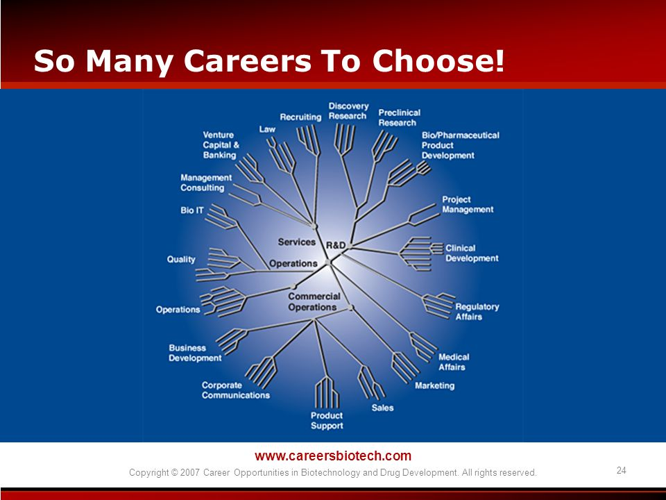 www.careersbiotech.com Copyright © 2007 Career Opportunities in Biotechnology and Drug Development. All rights reserved. 24 So Many Careers To Choose!
