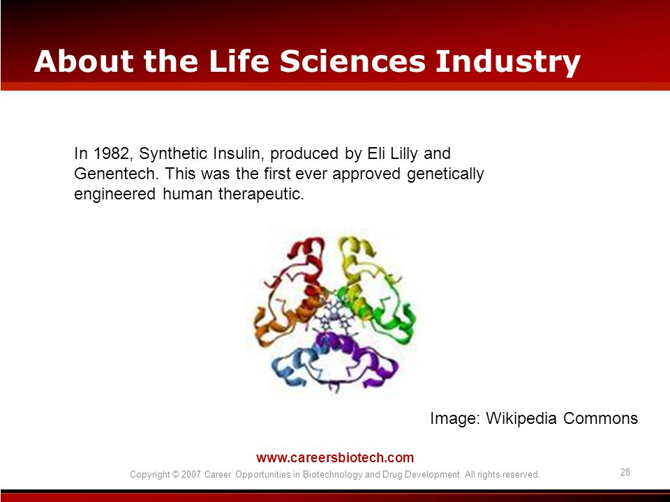 www.careersbiotech.com Copyright © 2007 Career Opportunities in Biotechnology and Drug Development. All rights reserved. 28 About the Life Sciences In