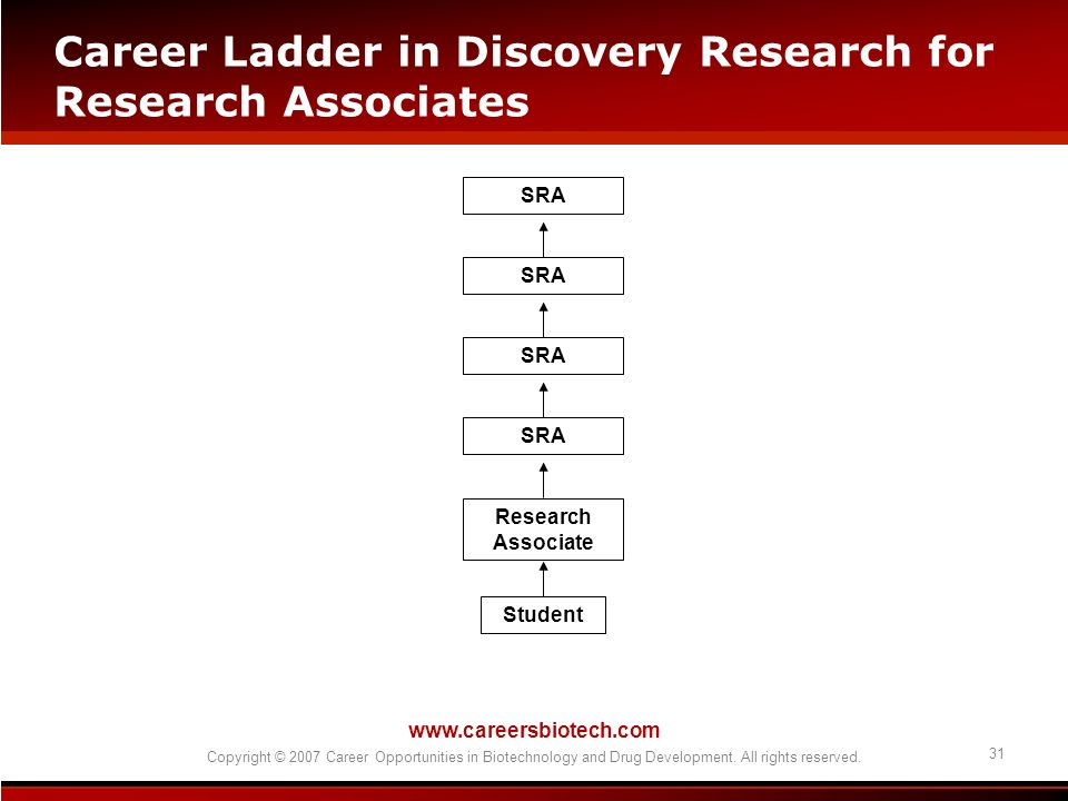 www.careersbiotech.com Copyright © 2007 Career Opportunities in Biotechnology and Drug Development. All rights reserved. 31 Career Ladder in Discovery