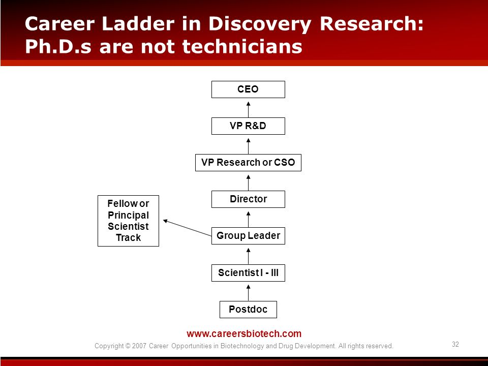 www.careersbiotech.com Copyright © 2007 Career Opportunities in Biotechnology and Drug Development. All rights reserved. 32 Career Ladder in Discovery