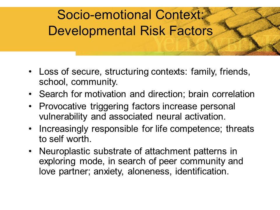 Loss of secure, structuring contexts: family, friends, school, community. Search for motivation and direction; brain correlation Provocative triggerin