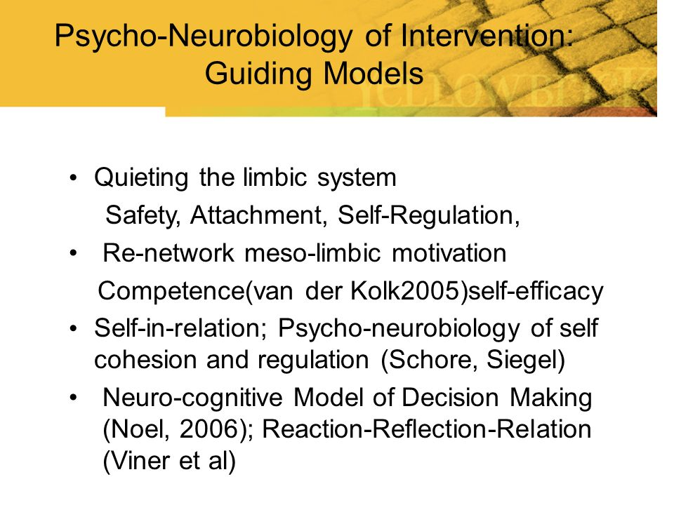 Quieting the limbic system Safety, Attachment, Self-Regulation, Re-network meso-limbic motivation Competence(van der Kolk2005)self-efficacy Self-in-re