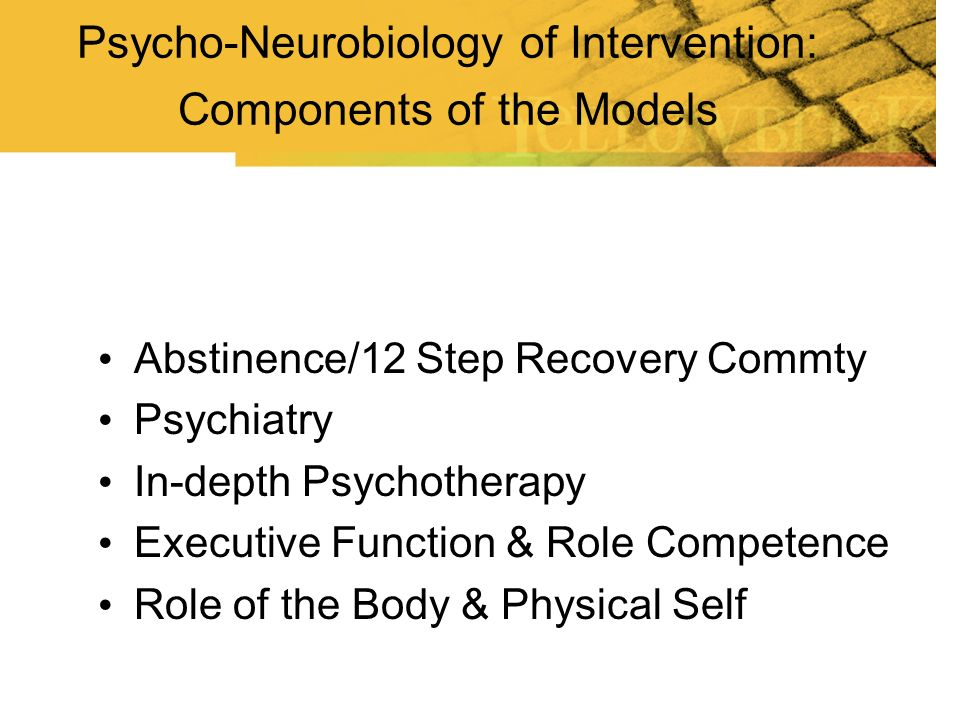 Abstinence/12 Step Recovery Commty Psychiatry In-depth Psychotherapy Executive Function & Role Competence Role of the Body & Physical Self Psycho-Neur
