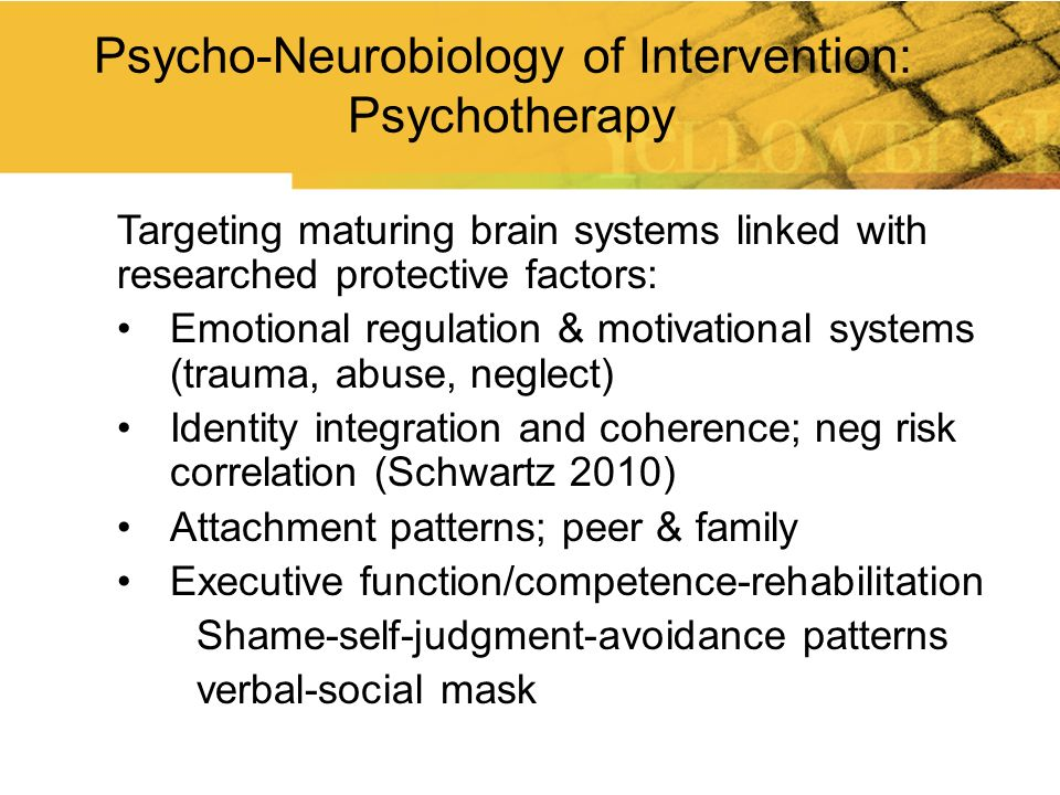 Targeting maturing brain systems linked with researched protective factors: Emotional regulation & motivational systems (trauma, abuse, neglect) Ident