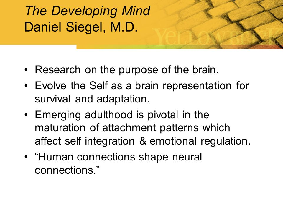 The Developing Mind Daniel Siegel, M.D. Research on the purpose of the brain. Evolve the Self as a brain representation for survival and adaptation. E