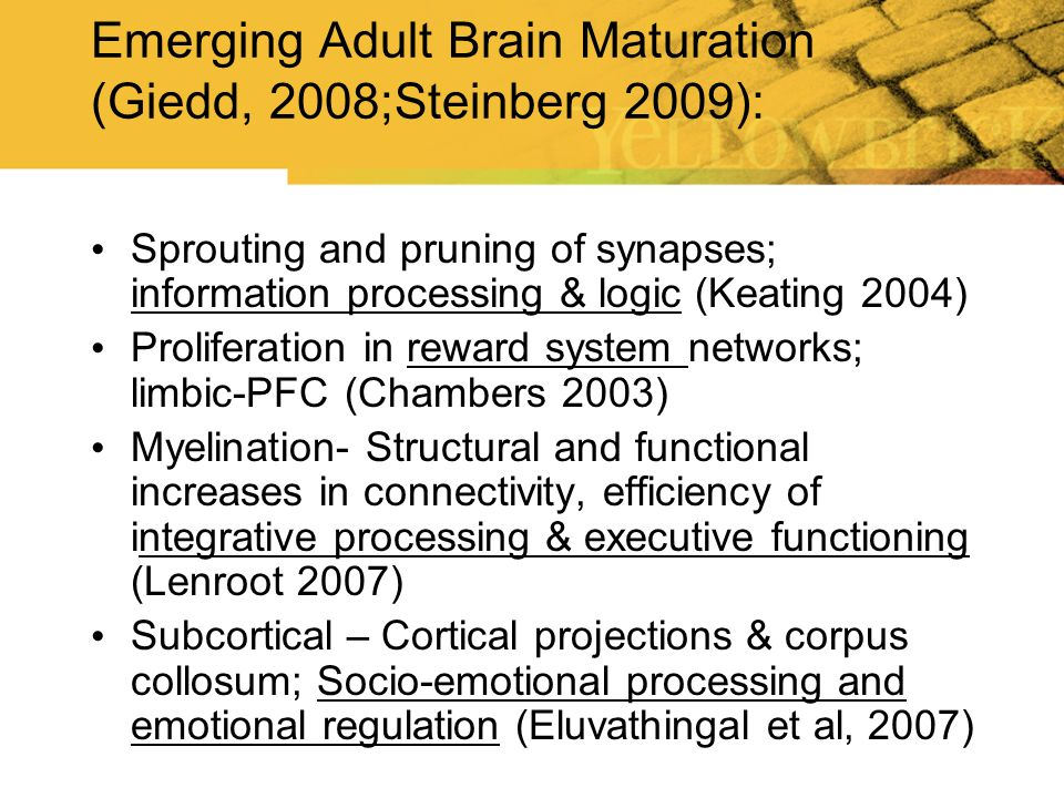 Normal Brain Maturation : The Frontal Lobes mature later into emerging adulthood Gogtay, N., et al (2004).