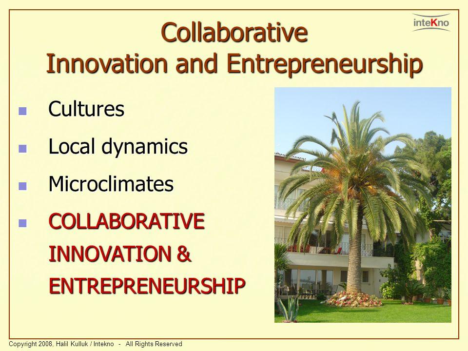Collaborative Innovation and Entrepreneurship Cultures Cultures Local dynamics Local dynamics Microclimates Microclimates COLLABORATIVE INNOVATION & E