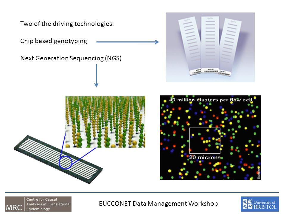 EUCCONET Data Management Workshop Two of the driving technologies: Chip based genotyping Next Generation Sequencing (NGS)
