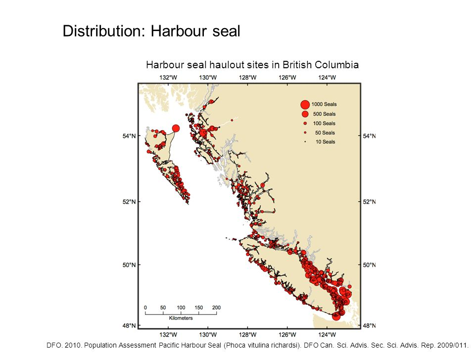 Harbour seal haulout sites in British Columbia Distribution: Harbour seal DFO. 2010. Population Assessment Pacific Harbour Seal (Phoca vitulina richar