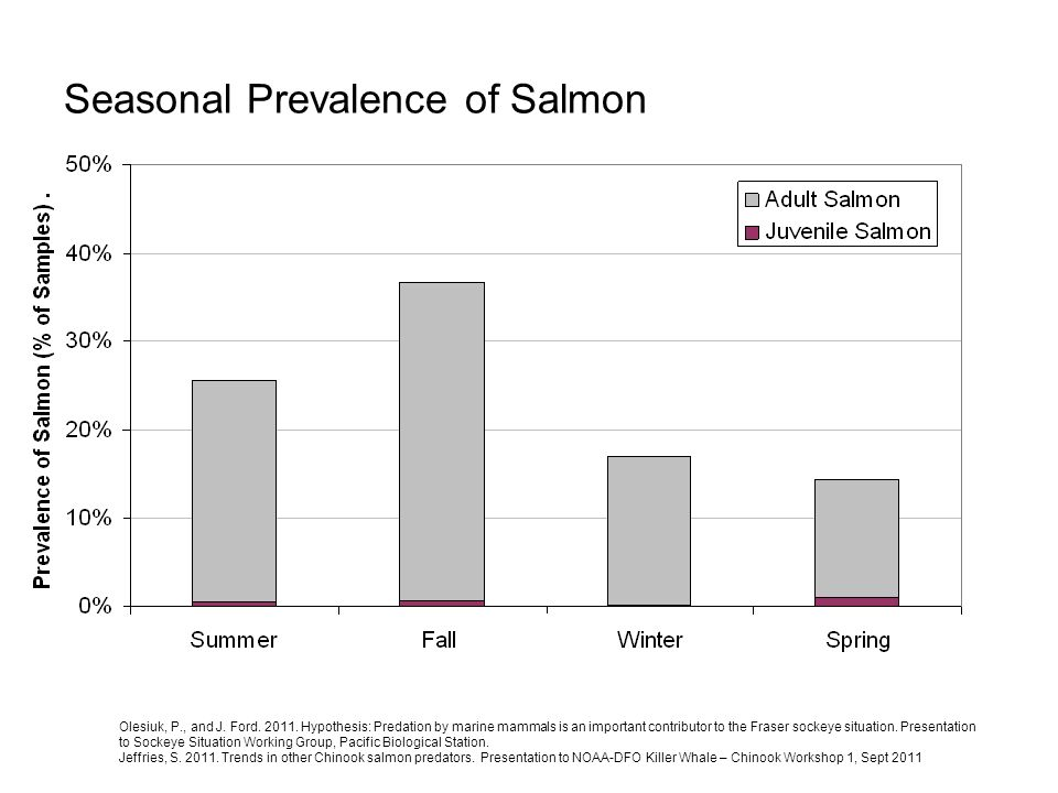 Seasonal Prevalence of Salmon Olesiuk, P., and J. Ford. 2011. Hypothesis: Predation by marine mammals is an important contributor to the Fraser sockey