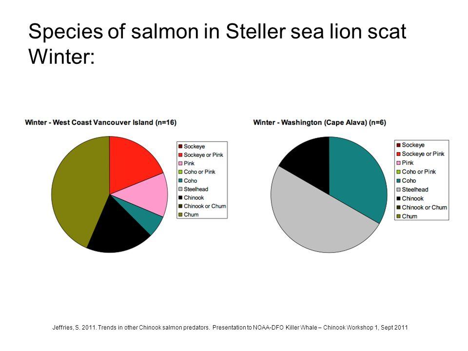 Species of salmon in Steller sea lion scat Winter: Jeffries, S. 2011. Trends in other Chinook salmon predators. Presentation to NOAA-DFO Killer Whale