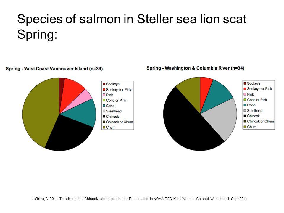 Species of salmon in Steller sea lion scat Spring: Jeffries, S. 2011. Trends in other Chinook salmon predators. Presentation to NOAA-DFO Killer Whale
