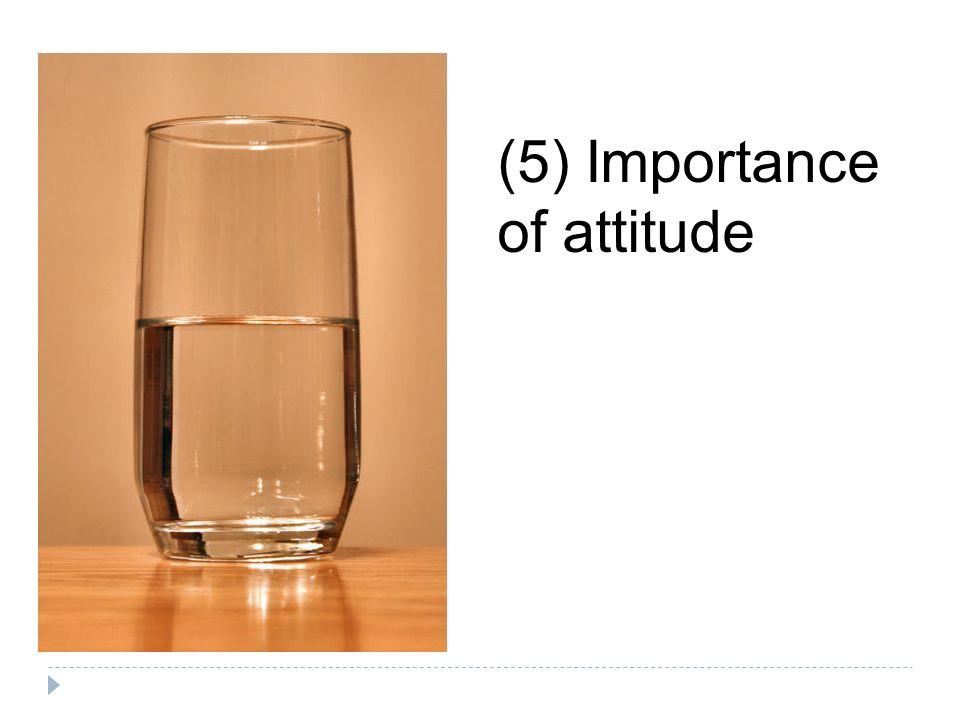 (5) Importance of attitude