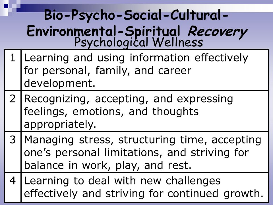 Bio-Psycho-Social-Cultural- Environmental-Spiritual Recovery Psychological Wellness 1Learning and using information effectively for personal, family,