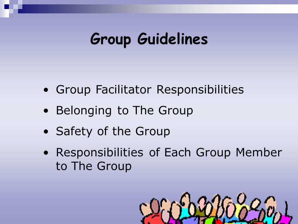 Group Guidelines Group Facilitator Responsibilities Belonging to The Group Safety of the Group Responsibilities of Each Group Member to The Group