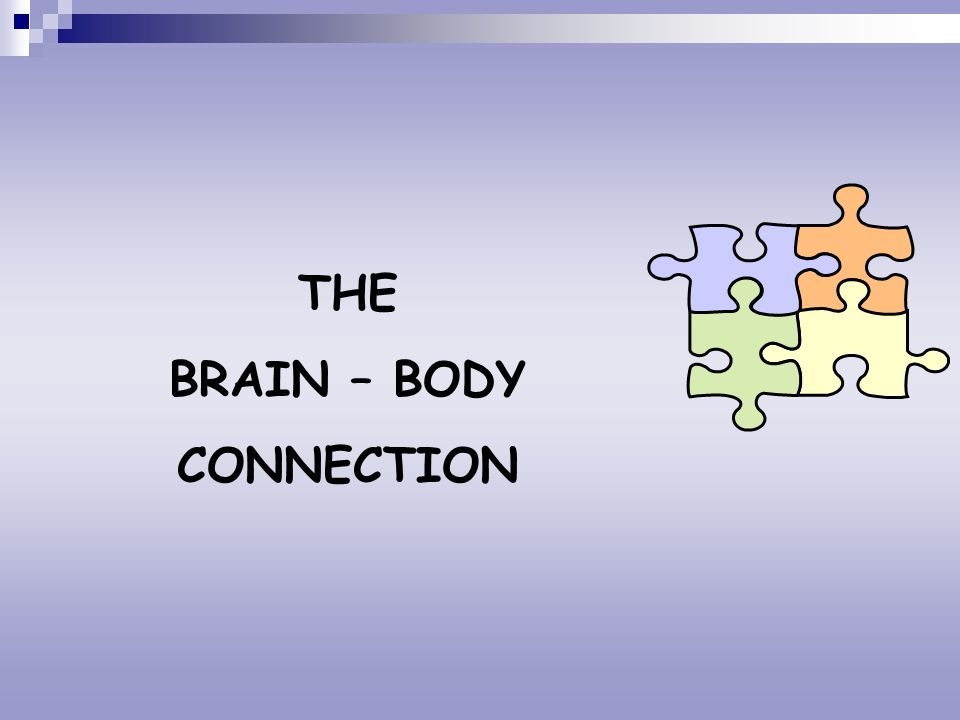 THE BRAIN – BODY CONNECTION