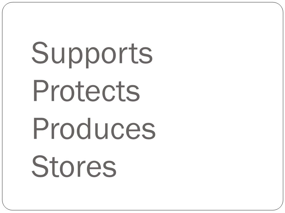 Supports Protects Produces Stores
