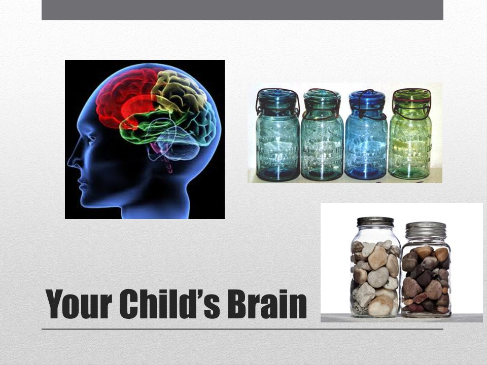 Your Childs Brain