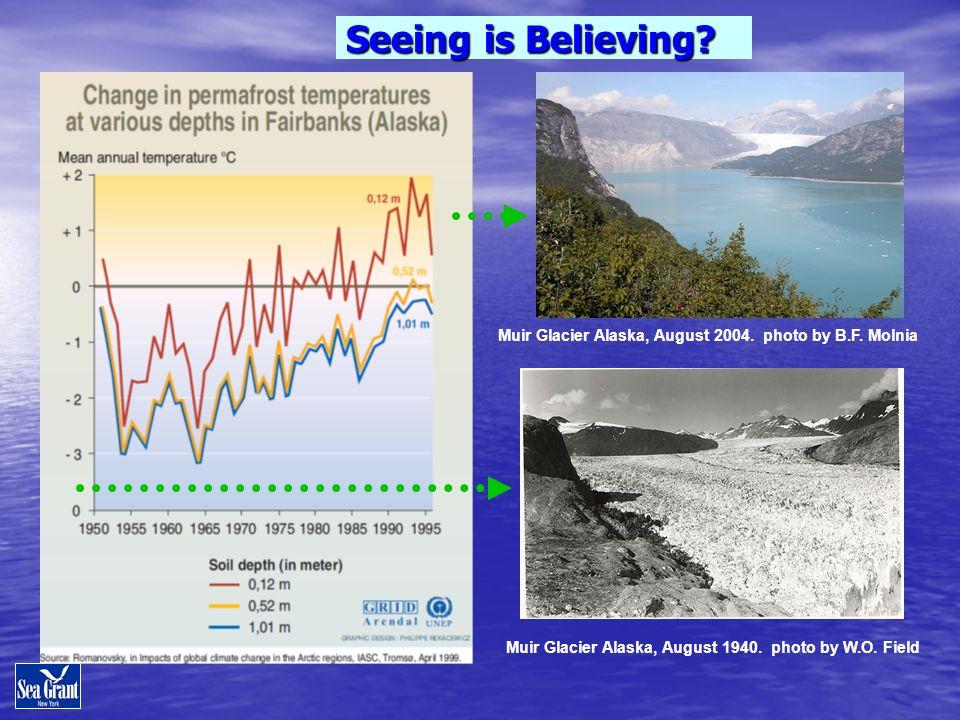 Muir Glacier Alaska, August 1940. photo by W.O. Field Seeing is Believing? Muir Glacier Alaska, August 2004. photo by B.F. Molnia