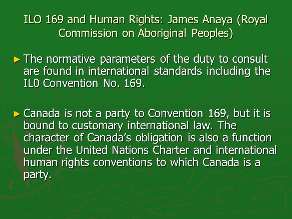 ILO 169 and Human Rights: James Anaya (Royal Commission on Aboriginal Peoples) The normative parameters of the duty to consult are found in internatio