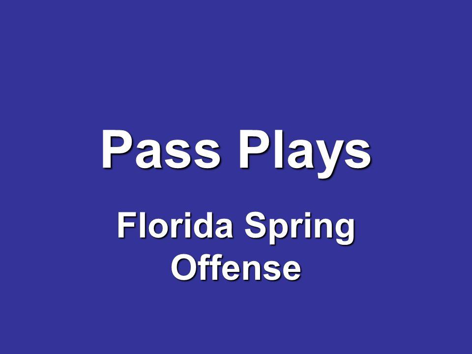 Pass Plays Florida Spring Offense