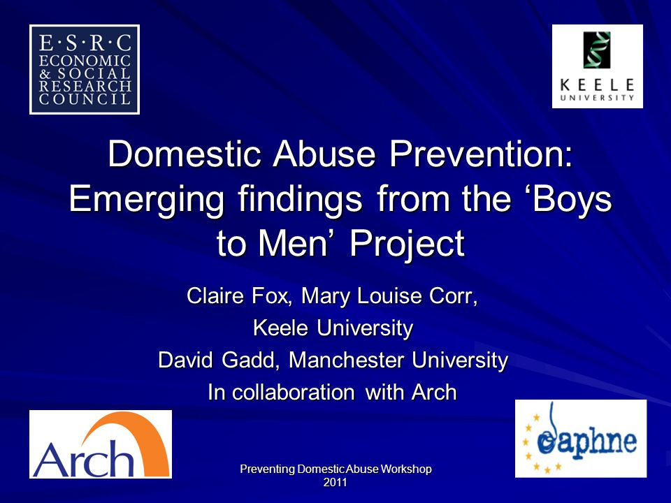 Preventing Domestic Abuse Workshop 2011 Experience questions Three sections: –Victimisation (10 questions) –Perpetration (10 questions) –Witnessing (8 questions) Response options: –Never, Once, More than Once.
