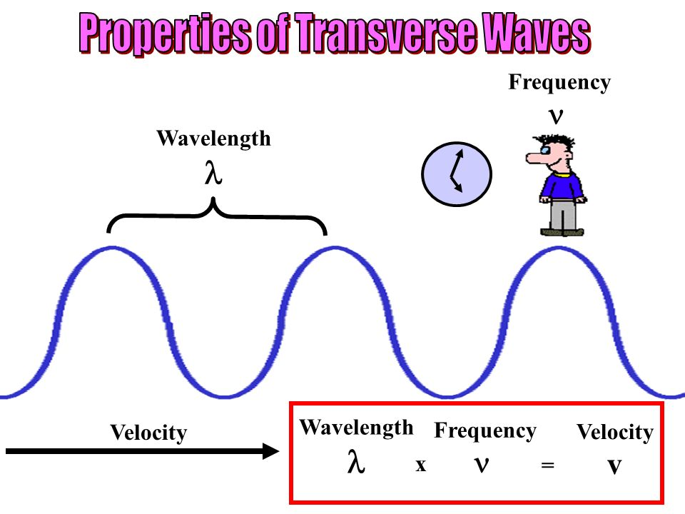 Wavelength Frequency Velocity Wavelength Frequency Velocity v x =