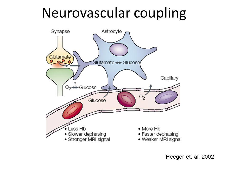 Neurovascular coupling Heeger et. al. 2002