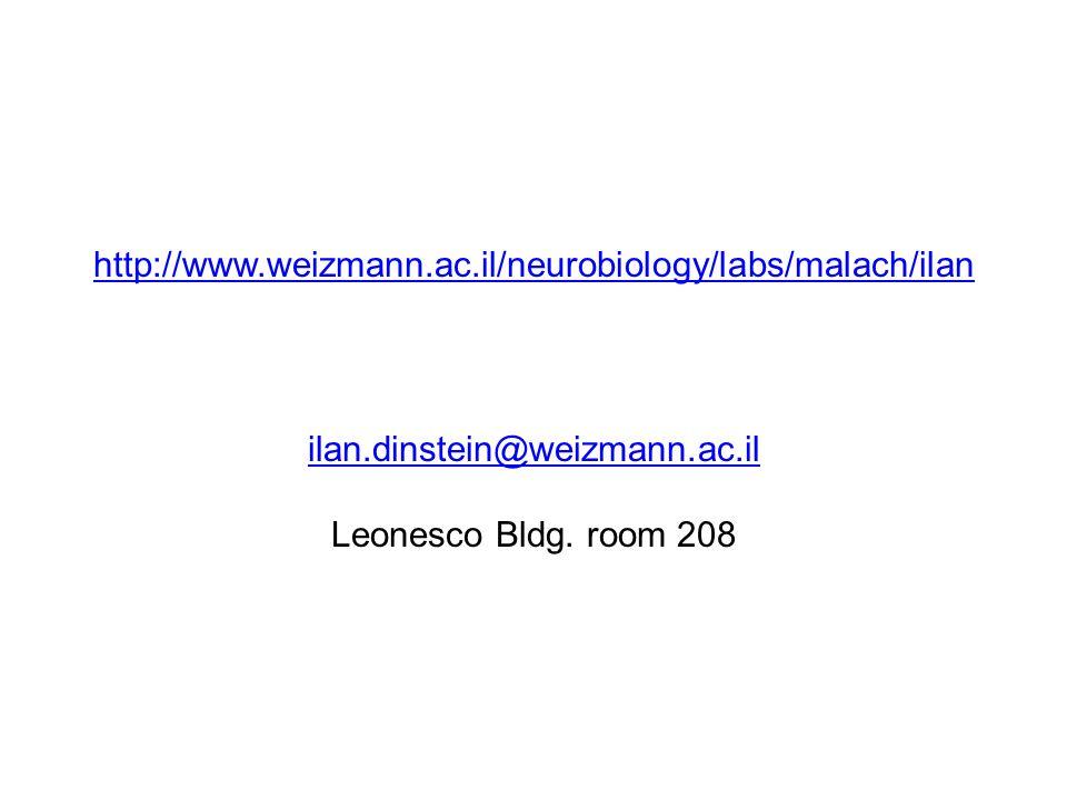 http://www.weizmann.ac.il/neurobiology/labs/malach/ilan ilan.dinstein@weizmann.ac.il http://www.weizmann.ac.il/neurobiology/labs/malach/ilan ilan.dins