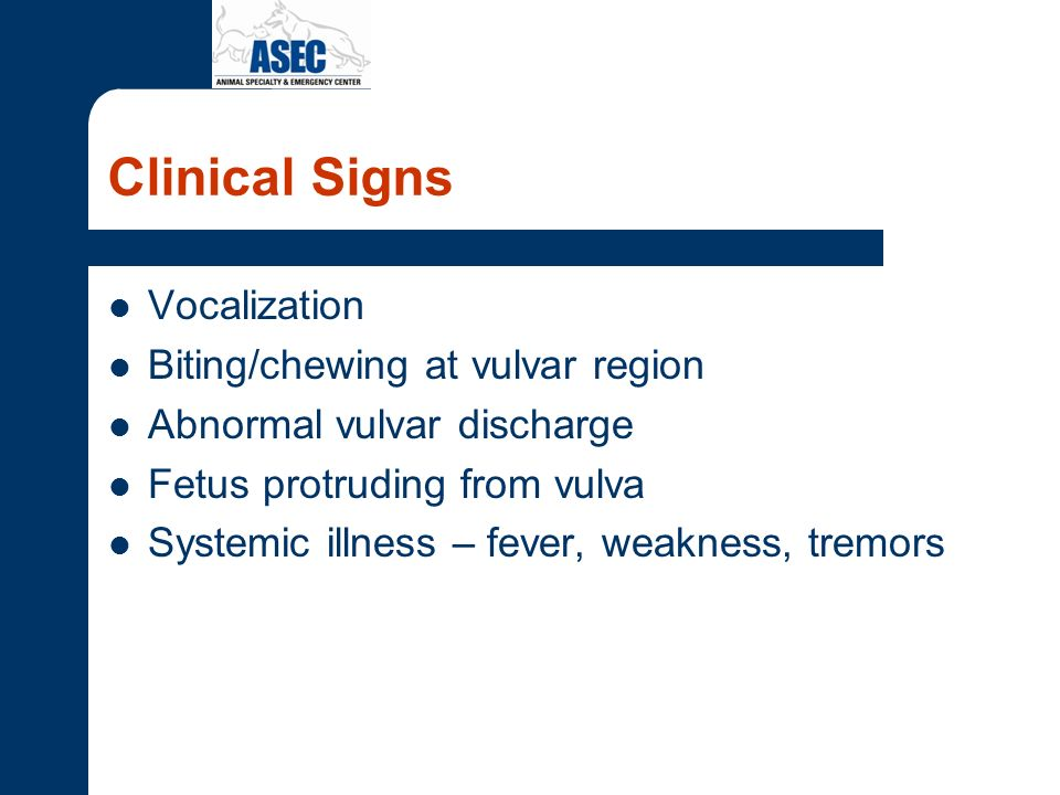 Clinical Signs Vocalization Biting/chewing at vulvar region Abnormal vulvar discharge Fetus protruding from vulva Systemic illness – fever, weakness,