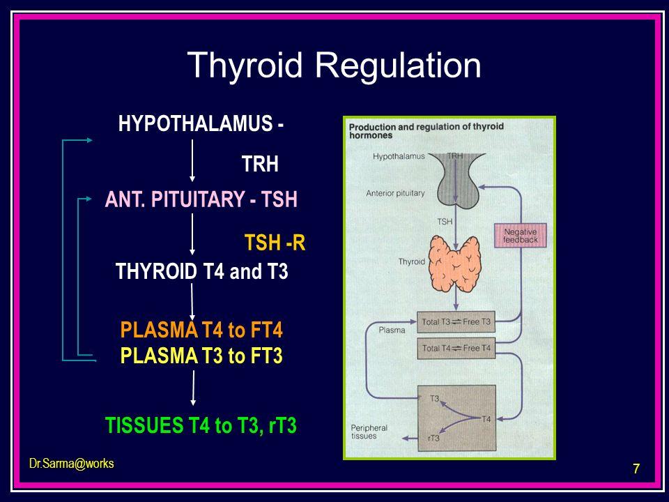 7 Dr.Sarma@works PLASMA T4 to FT4 HYPOTHALAMUS - TRH ANT. PITUITARY - TSH THYROID T4 and T3 PLASMA T3 to FT3 TISSUES T4 to T3, rT3 TSH -R Thyroid Regu