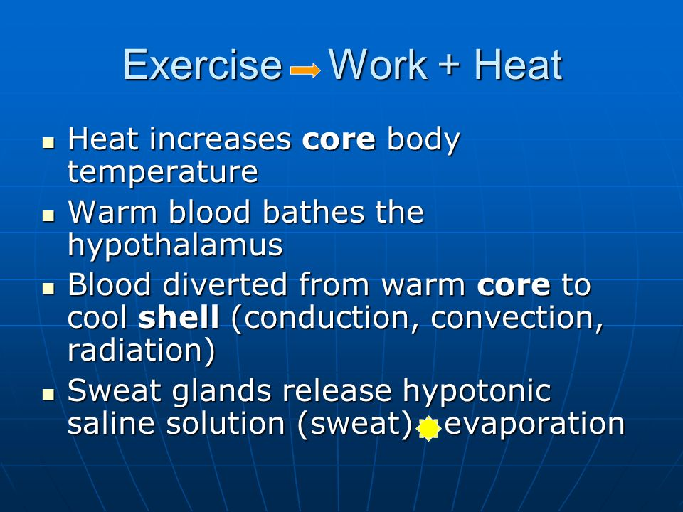 Exercise Work + Heat Heat increases core body temperature Heat increases core body temperature Warm blood bathes the hypothalamus Warm blood bathes the hypothalamus Blood diverted from warm core to cool shell (conduction, convection, radiation) Blood diverted from warm core to cool shell (conduction, convection, radiation) Sweat glands release hypotonic saline solution (sweat) evaporation Sweat glands release hypotonic saline solution (sweat) evaporation