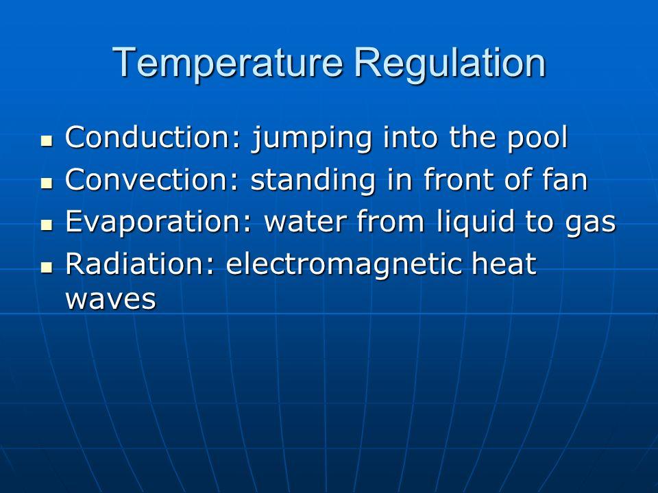 Temperature Regulation Conduction
