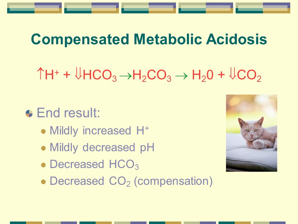 Compensated Metabolic Acidosis H + + HCO 3 H 2 CO 3 H 2 0 + CO 2 End result: Mildly increased H + Mildly decreased pH Decreased HCO 3 Decreased CO 2 (