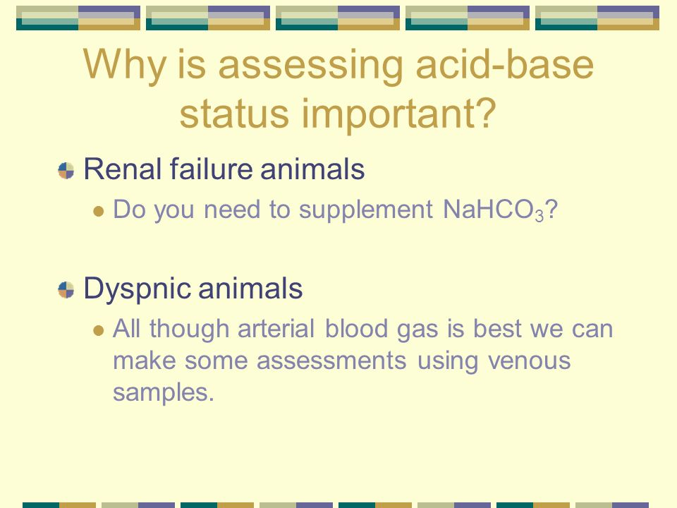 Why is assessing acid-base status important? Renal failure animals Do you need to supplement NaHCO 3 ? Dyspnic animals All though arterial blood gas i