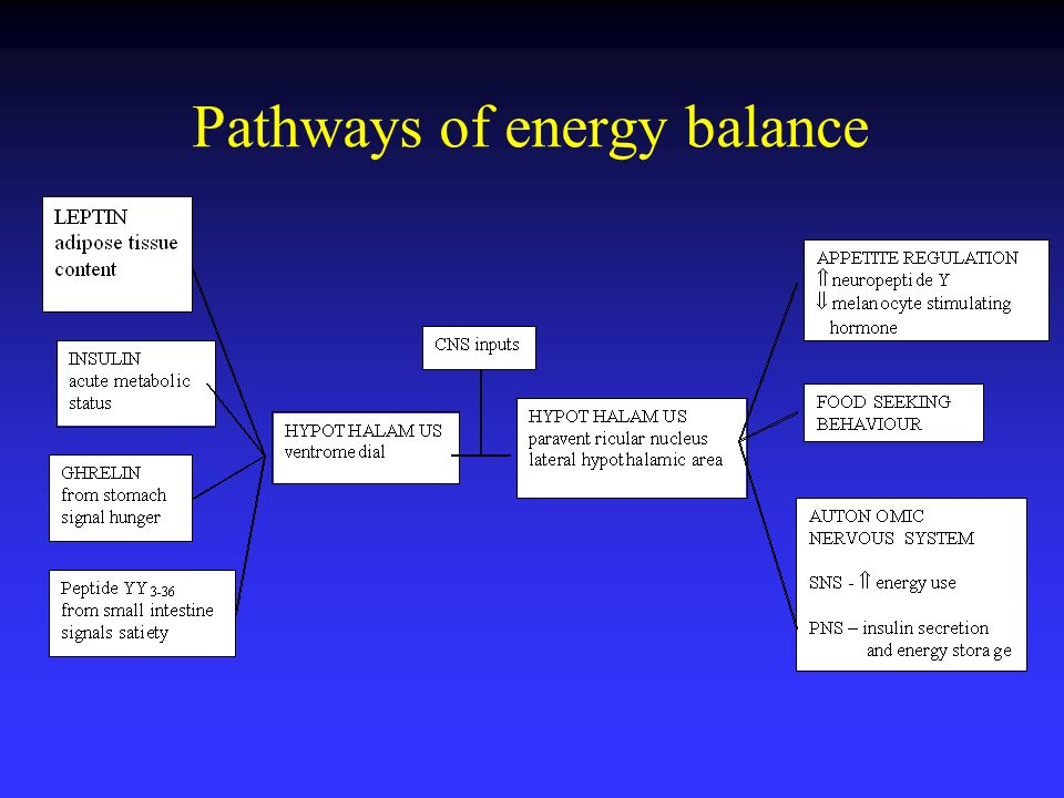 Pathways of energy balance