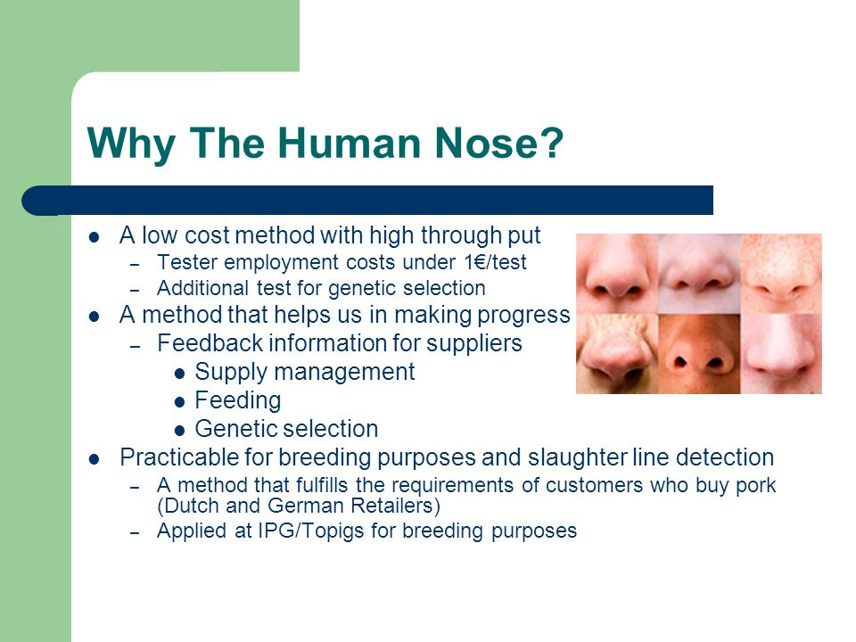 Why The Human Nose? A low cost method with high through put – Tester employment costs under 1/test – Additional test for genetic selection A method th